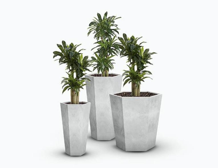 Concrete Pots/Terrazzo